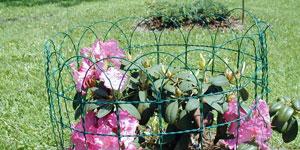 Okrasné ploty