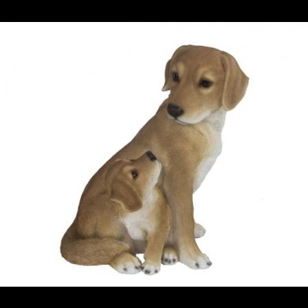 Polyresin Pes so šteniatkom 30x25x21cm