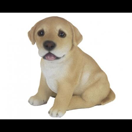 Polyresin Labrador 16x16x12cm