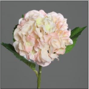 UK Hortenzie vetvička sv. ružová