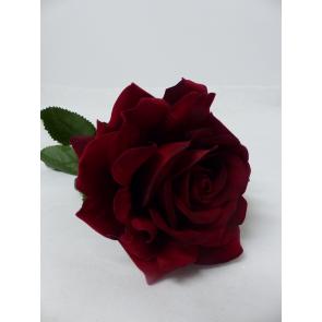 UK Ruže červená