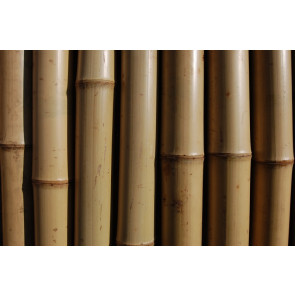 Bambusová tyč 120cm 10-12mm