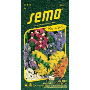 limonka Statice sinuata-směs