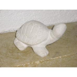 Želvička pieskovec 120mm