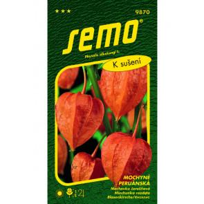 Mochyně peruánská - oranžová (k sušení)