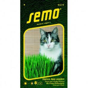 Tráva pro kočky 10g